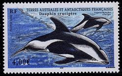 138 440 2006 dauphin