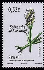 146bis 871 2006 orchidees