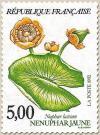 50 2769 1992 nenuphar jaune
