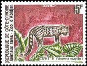 51 1992 genette